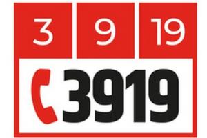 num-3919